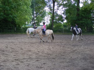 Training auf dem Sandplatz