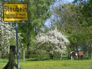 Ortseingang von Steubeln mit Pferdekoppel im Hintergrund